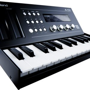 A-01 Roland